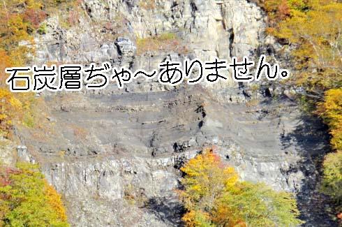 この部位の黒いのは石炭層ぢゃ~なく、泥岩らしーです。
