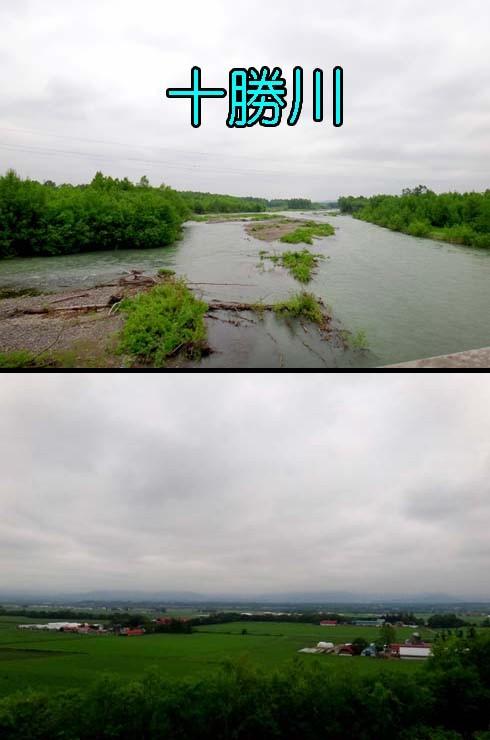 大平原っつーても、原始的な風景ぢゃ~ありません。