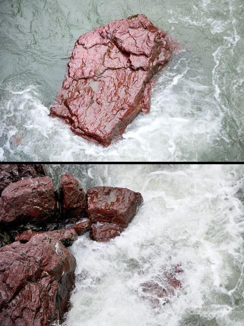 水がかかってると鮮やかさを増します。