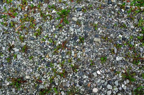 単に砂利が散らばってるだけと思ってても構わんですケロな。