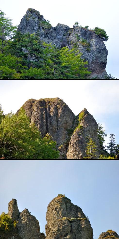あの上にエゾシカが登ったりしないんでしょーか。