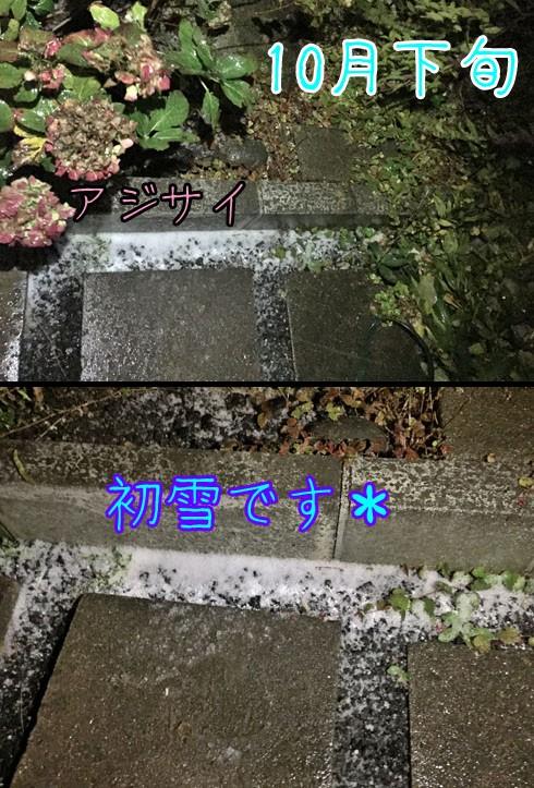 10月下旬に初雪です。