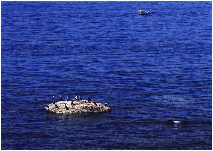 28 群青の海.jpg
