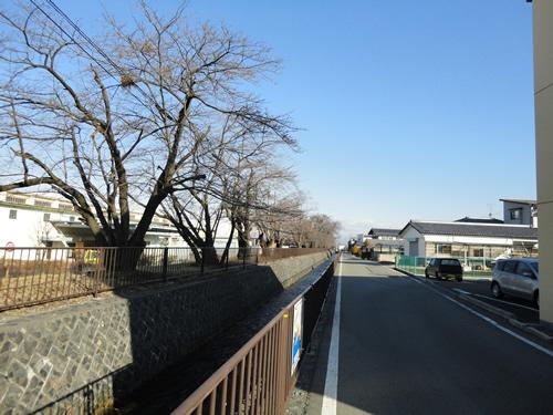 20120229-11.JPG