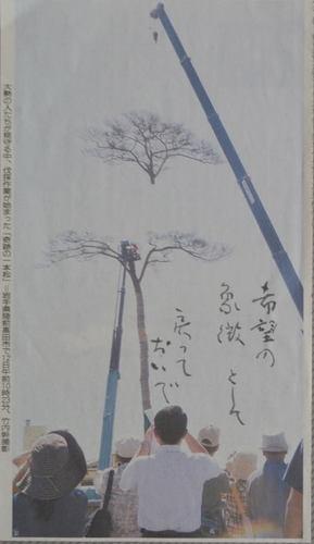 DSC_1927.jpg