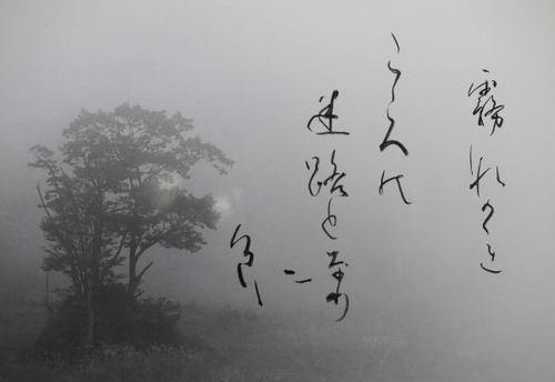 霧流れ.jpg