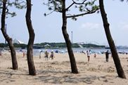 海の公園-1JPG.jpg