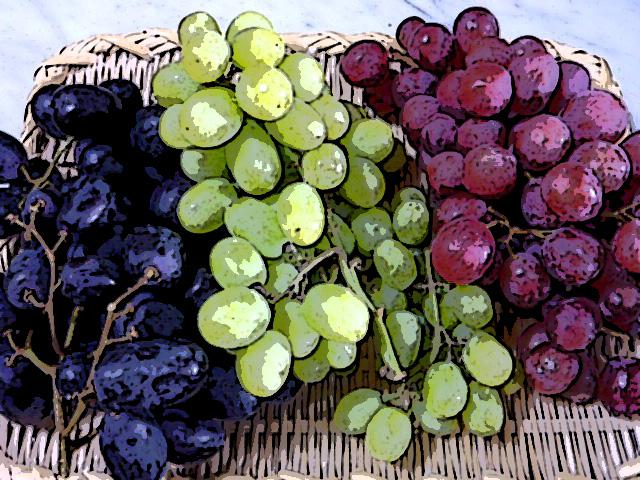チリ産葡萄