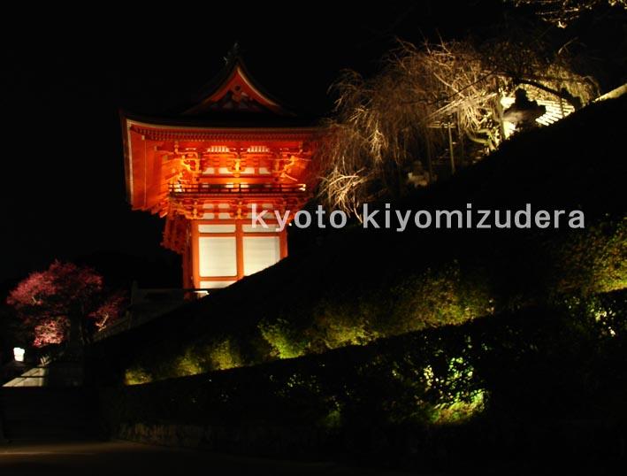 kyo-4.jpg