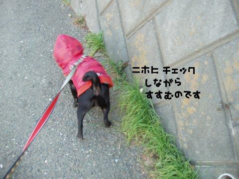 080301_17.jpg
