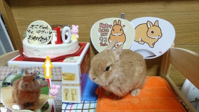 10歳の誕生日です!