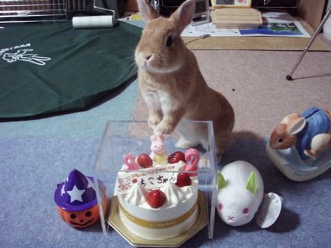 2歳の誕生日です!