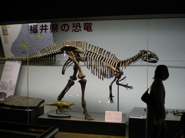 恐竜22.jpg