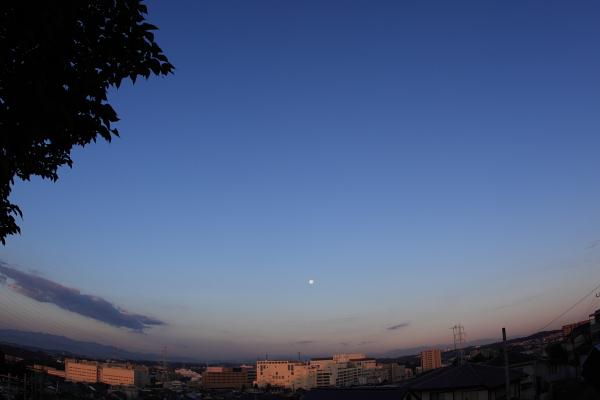 1017朝の月.JPG