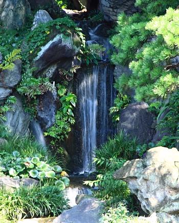 東御苑・二の丸庭園滝.JPG