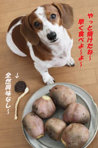 柚02111.JPG