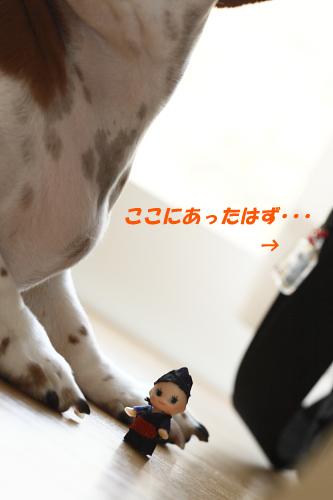 柚02131.JPG