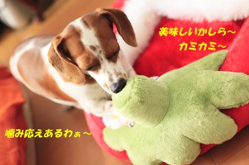柚02151.JPG