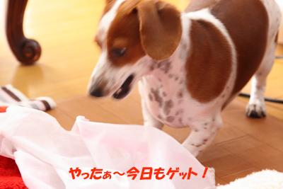 柚1030洗濯ネット.JPG