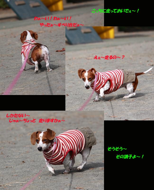 柚1107RUN1.jpg