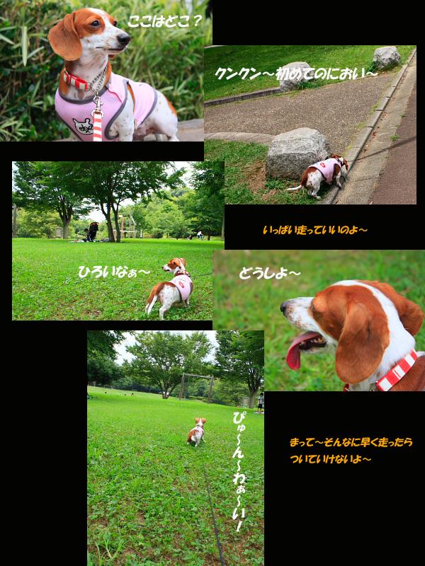 柚721-14.jpg