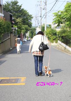柚804_02.JPG