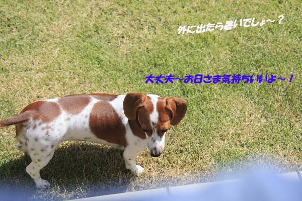 柚912_00.JPG