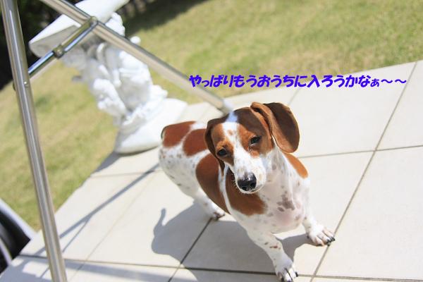 柚912_01.JPG