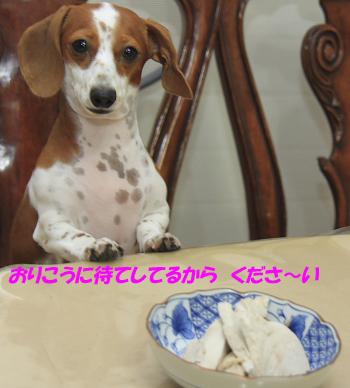 柚921_00.JPG