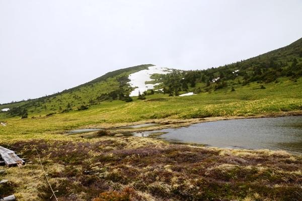 登山道9.JPG