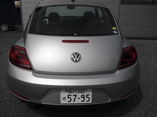 beetle_01.jpg