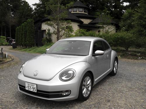 beetle_05.jpg