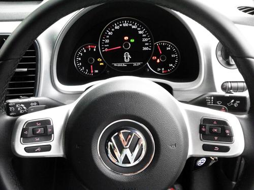 beetle_08.jpg