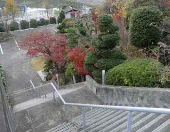 政林寺2 (1280x1001).jpg