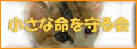 tanpopo_banner-01.jpg
