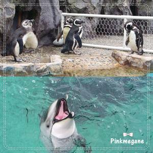 水族館・2.jpg