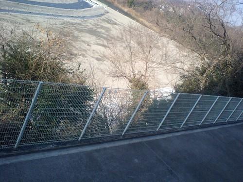 多摩川0131101.JPG