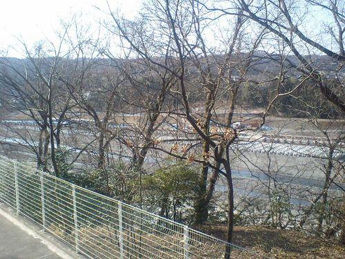 多摩川0131106.JPG