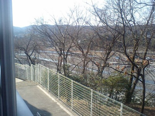 多摩川0131107.JPG