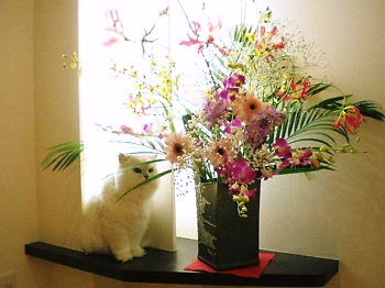 花とぎん4.JPG