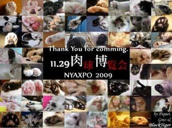 nyaxpo2009card3.jpg