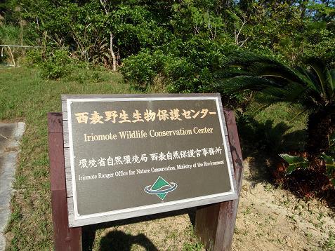 野生生物保護センター.jpg