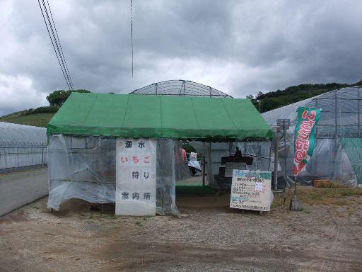 2012_05032012-5-3浮羽0011.JPG