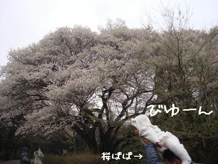 びゆーん.jpg