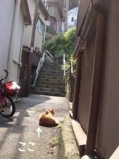 江ノ島004.jpg