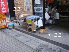 江ノ島013.jpg
