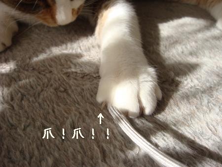 狙う003.jpg