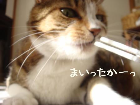 狙う006.jpg