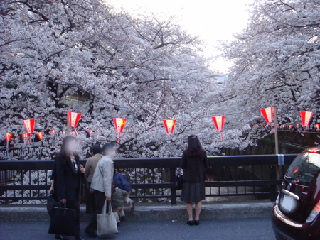 目黒川002.jpg