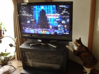 TV&Yota.jpg